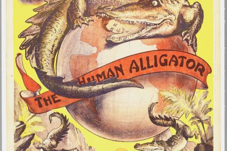 Affiche voor Alberto  The Human Alligator.